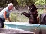 Captura del vídeo publicado en el New York Post de Bonnie Hart bañando a uno de sus osos.