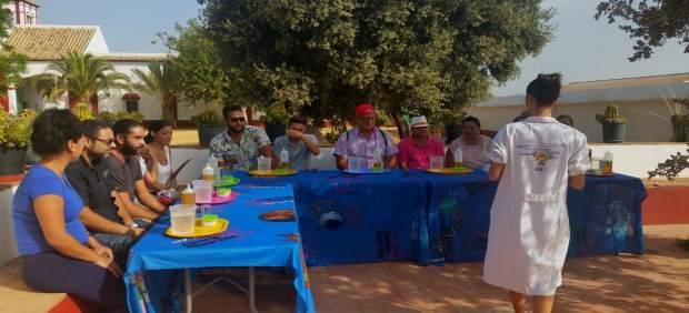 Visitas Solidarias al Olivo