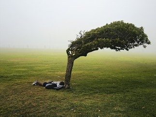 Pieter Hugo - GREEN POINT COMMON, CAPE TOWN, FROM THE SERIES KIN, 2006-2013