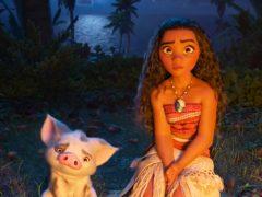 Estrenos de cine: de 'Vaiana' a un 'premio envenenado'