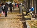 Suelo lleno de hojas en Madrid