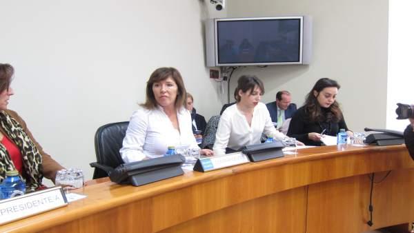 La conselleira de Medio Ambiente Beatriz Mato en el Parlamento.