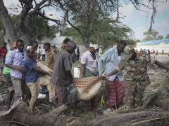 Ascienden a 20 los muertos provocados por coche bomba de Al Shabab en Somalia