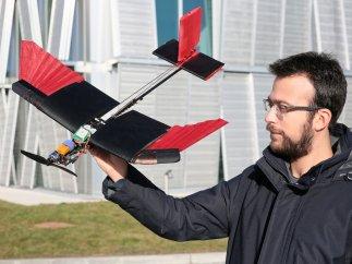 Dron con plumas