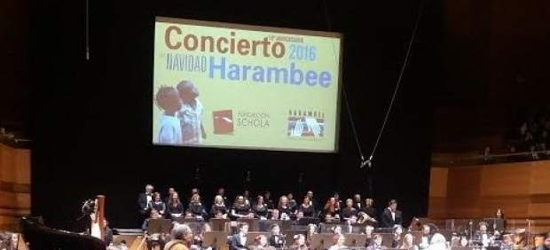Concierto Harambee