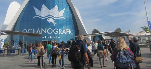 Cacsa y parques reunidos alcanzan un acuerdo sobre l for Oceanografic valencia precio 2016