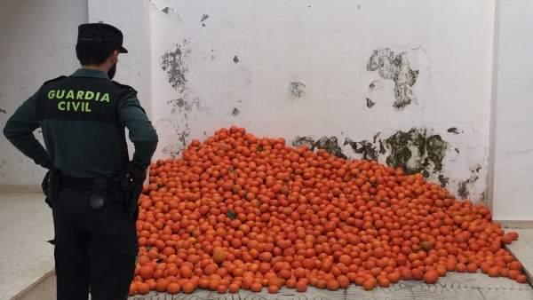 Agente junto a las mandarinas incautadas