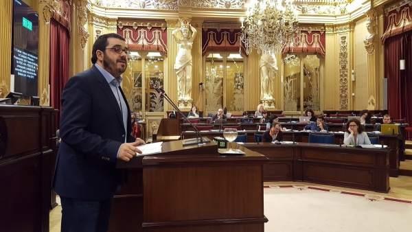 El conseller de Medio Ambiente, Vicenç Vidal, durante el pleno de Presupuestos