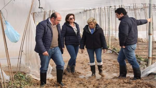 El presidente de la Comunidad visitó hoy explotaciones agrícolas afectadas