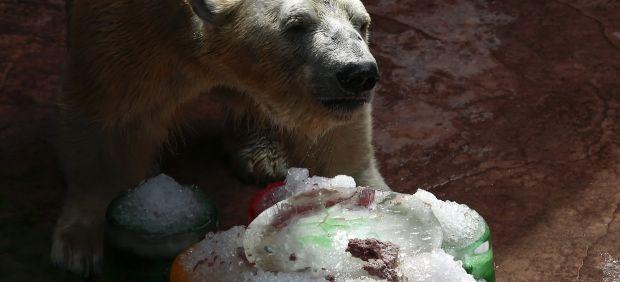 Una tarta de cumpleaños helada