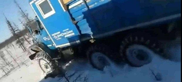 El brutal atropello de un oso que ha conmocionado Rusia