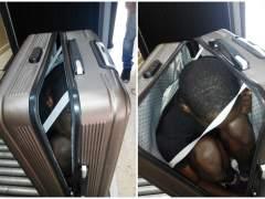 Le llevaban dentro de una maleta
