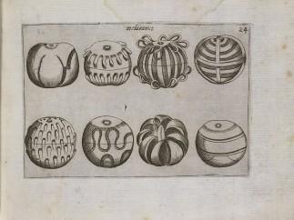 Oranges, 1639, Unknown artist