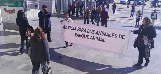 El juicio a la dueña de Parque Animal