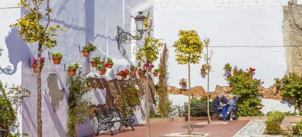 El Ayuntamiento Mostrará En Fitur La Consolidación De 'Estepona, Jardín De La Co