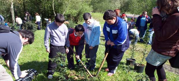 Campaña de repoblación forestal