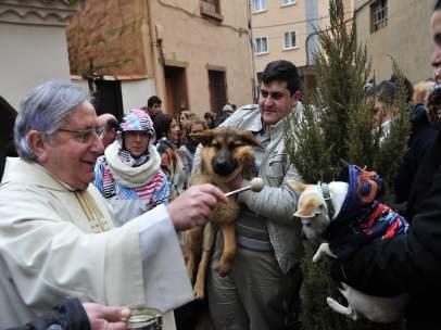 Bendición de animales en la ermita de San Antón de Teruel