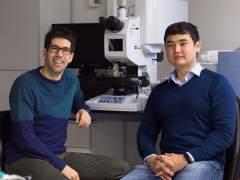 Científicos españoles idean una nueva capa de invisibilidad