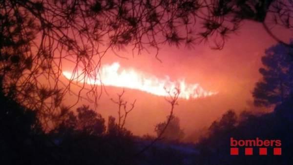 Un incendio forestal quema la zona del Coll de Rajolers en Tortosa