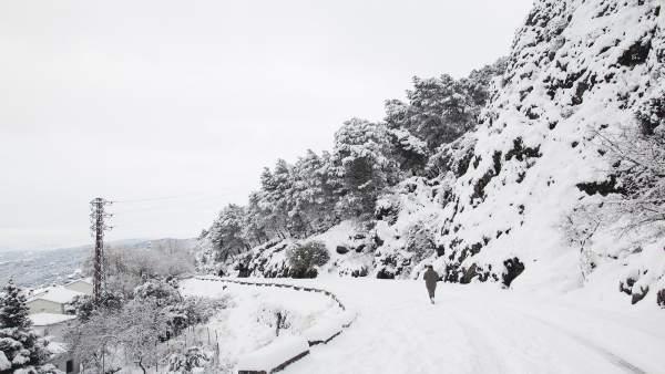 Carretera en Grazalema nevada