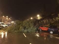 Temporal devastador: olas de 8 metros, tráfico cortado, desbordamientos y playas desaparecidas