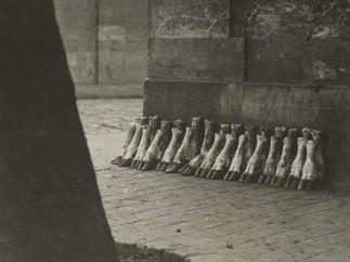 Eli Lotar, At the La Villette slaughterhouses, 1929