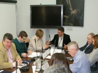 Reunión de la Comisión de Despoblación de la FEMP.