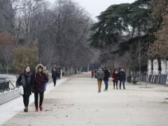 Cierran el Retiro y los Jardines de Sabatini por el riesgo de caída de árboles