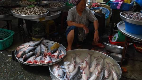 Panga en un mercado de Vietnam
