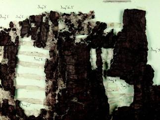 Herculaneum scrolls