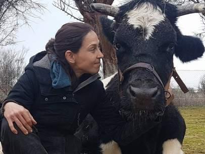Recogen firmas para salvar a la vaca 'Carmen', enferma de tuberculosis