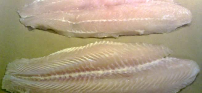 Filetes de panga