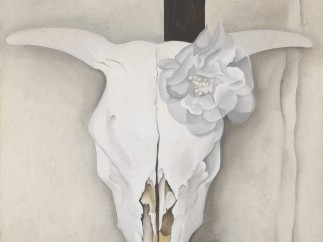Georgia O'Keeffe, Cow's Skull with Calico Roses, 1931