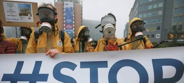 El Parlamento Europeo quiere una reevaluación científica de los efectos cancerígenos del ...