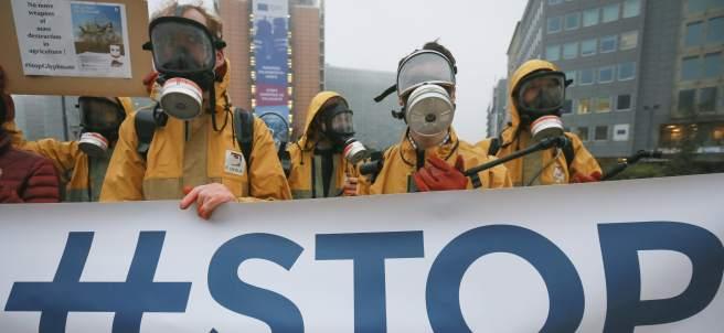 Greenpeace, Bruselas