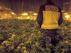 Fumar marihuana triplica el riesgo de muerte por hipertensión