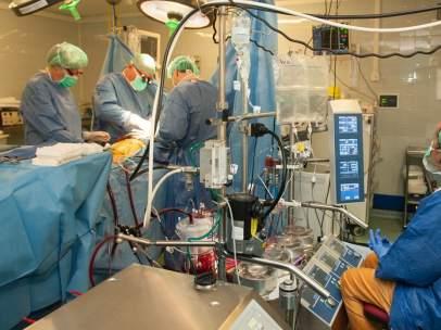 Un trasplante de corazón realizado en el Hospital de Bellvitge de L'Hospitalet.