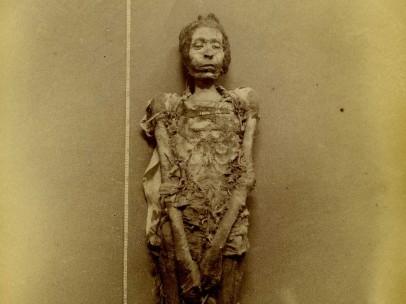 Jan Herman Insinger (1854-1918) - Gemummificeerd lichaam van een man genaamd Djed-ptah-anf-ankh, 1886