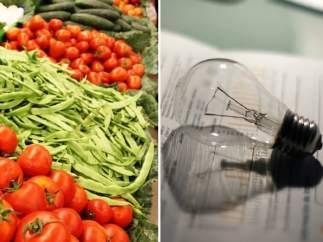 Verduras y suministros