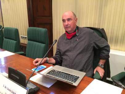 Lluis Llach, cantautor y diputado de Junts pel sí en el Parlament.