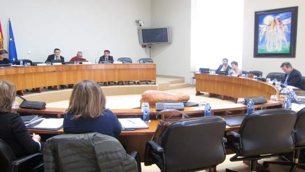 Comisión institucional