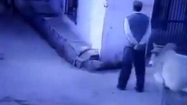 Atacado por un toro en una calle de la India