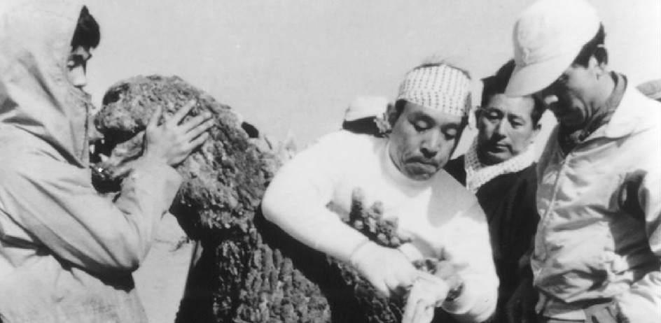 Haruo Nakajima / Godzilla. Haruo Nakajima se puso dentro del disfraz de Godzilla, el famoso monstruo japonés, en las películas que se rodaron entre 1954 y 1972. Un traje de 100 kilos de peso y una interpretación que le acarrería varias lipotimias.