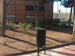 Barcelona controla la natalidad de las palomas con pienso anticonceptivo