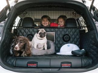 Nissan X-Trail 4Dogs, el coche para viajar con mascotas