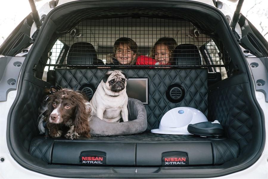 Nissan Presenta Un Prototipo Del X Trail Pensado Para Perros