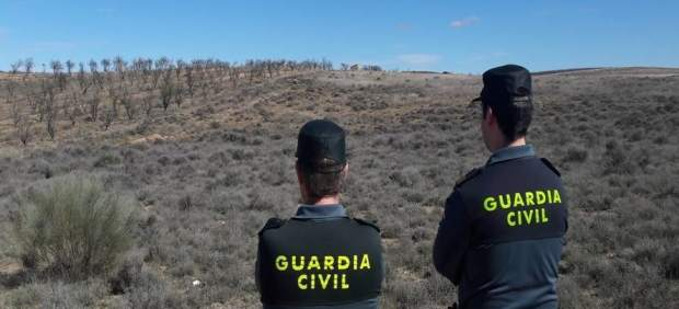 La Guardia Civil en un coto de caza.