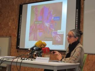 Jordina Belmonte, en la previsión polínica de la primavera en Cataluña