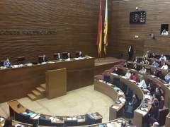 Votació sobre la Llei Cotino en el ple