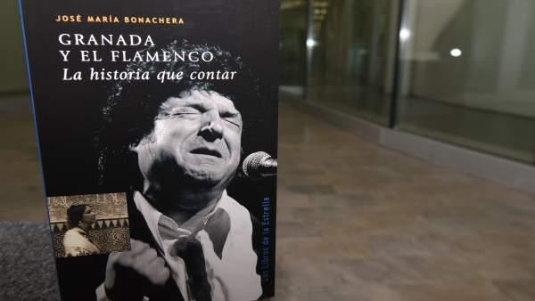 Portada de 'Granada y el flamenco. La historia que contar'